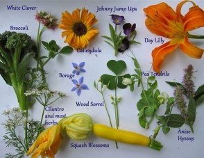 edible-flowers, add color and nutrition